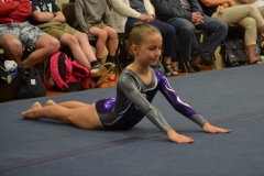 Weston aerobic gymnastics club 2018 championship